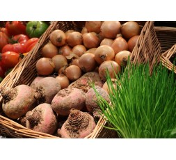 Marché de fruits et légumes frais bio