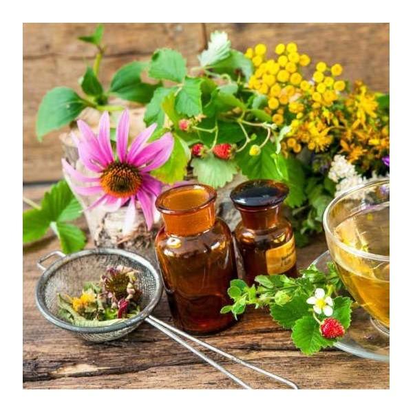 Consultation de naturopathie
